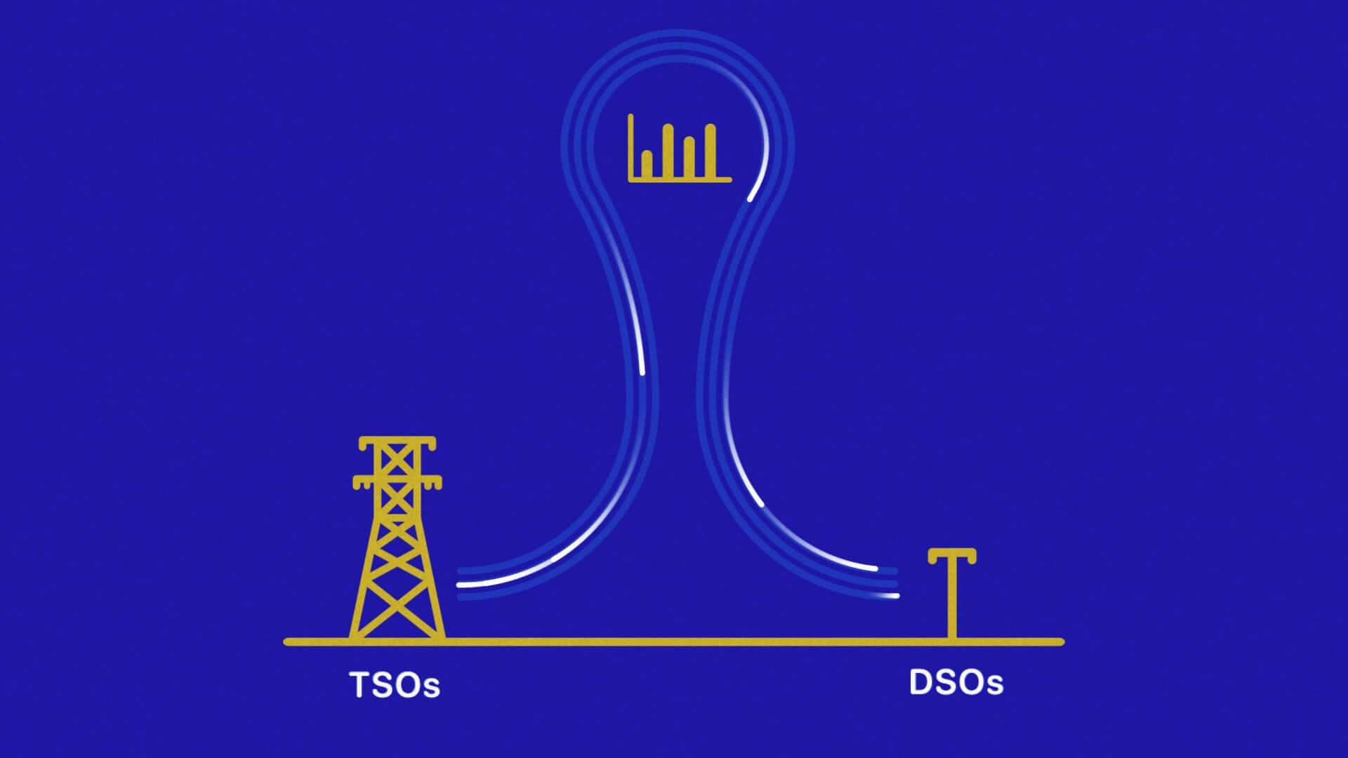 TSO-DSO